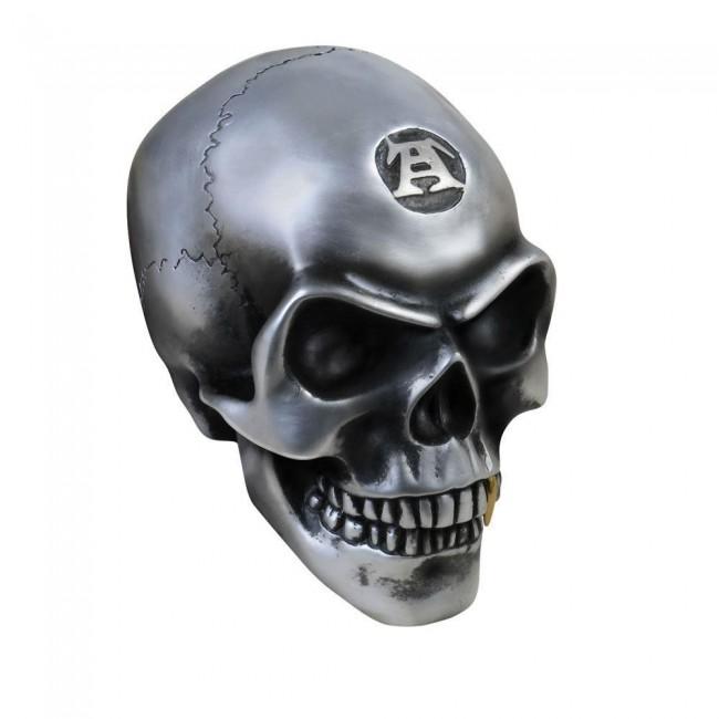 Alchemy Gothic-Metallised Alchemist Skull