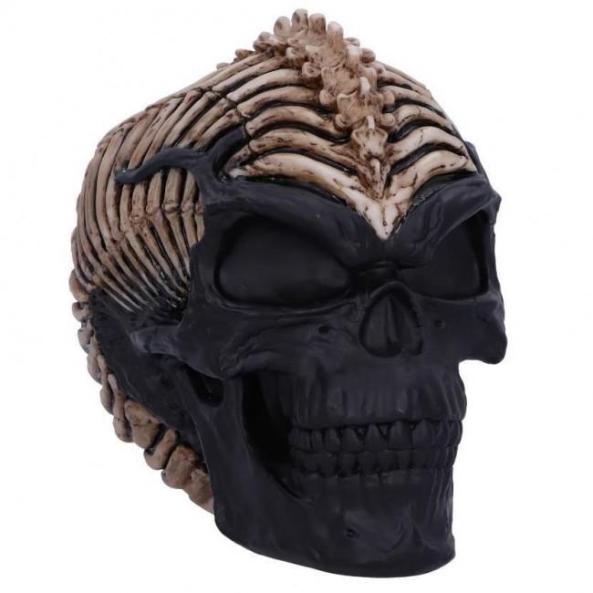 Nemesis Now-Spine Head Skull Ornament