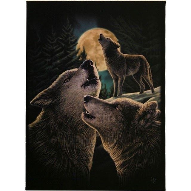 Lisa Parker-Wolf Song Canvas