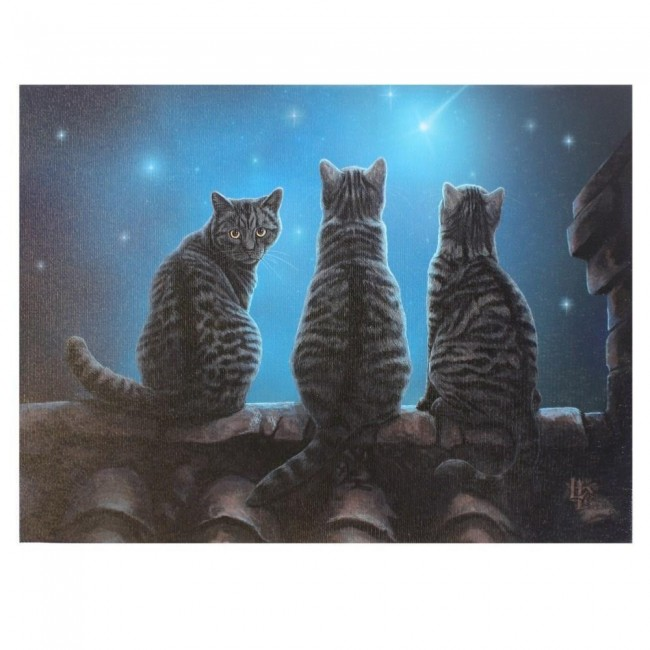Lisa Parker-Wish Upon A Star Canvas