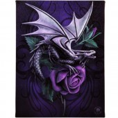 Dragon Beauty Canvas