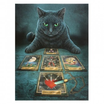 -The Reader Cat Canvas