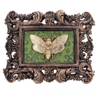 Macabre Moth Mount Plaque
