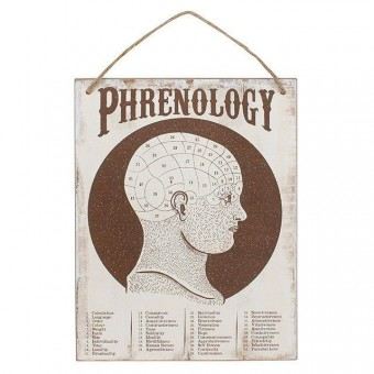 Something Different-Phrenology Wall Sign