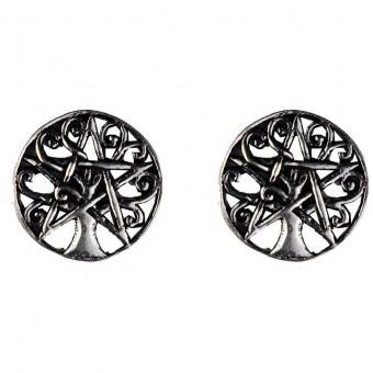 Phoenixx Rising-Silver Celtic Ear Studs