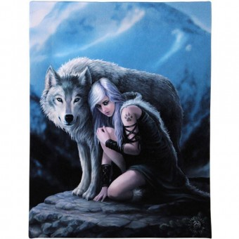 Anne Stokes-Protector Canvas